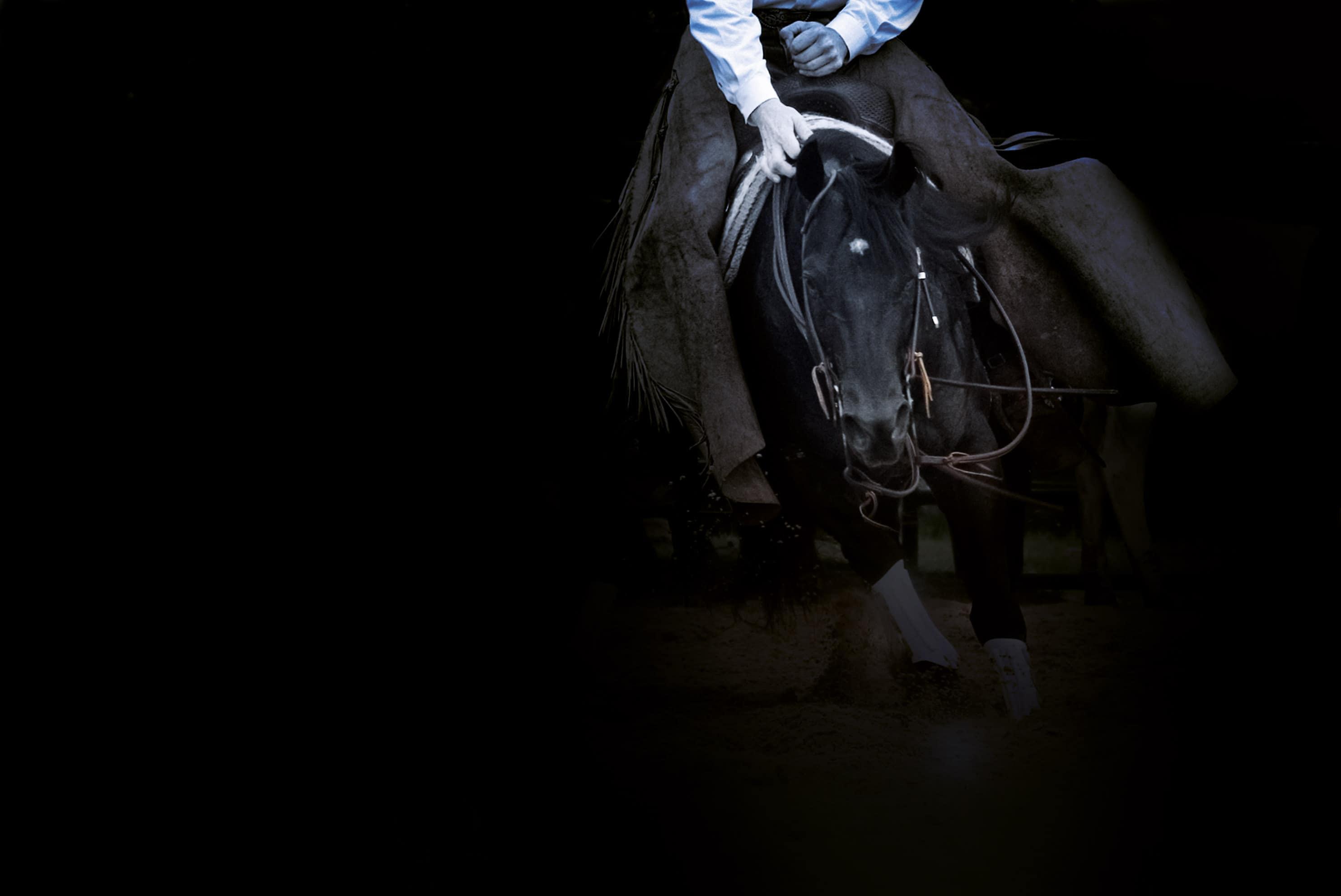 Roeschmann Cutting Horses